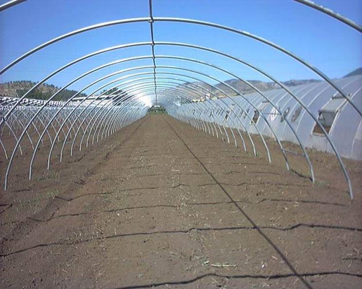 costruire una serra tunnel outdoor per canapa
