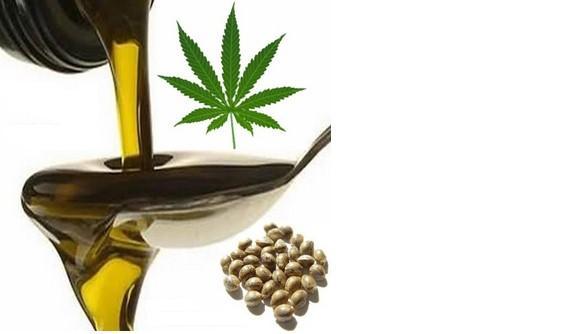 L5 3 - Olio semi di Canapa - Che cos'è e quali sono i benefici