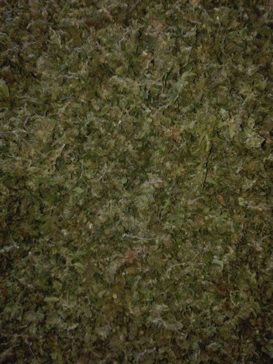 WhatsApp Image 2018 09 10 at 15.28.29 555x740 - Trinciato di Cannabis Light finola 50 g