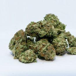marijuana 2174302 640 262x262 - Cannabis Light Carmagnola
