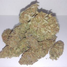 IMG 20190304 121840 262x262 - Cannabis Light Strawberry
