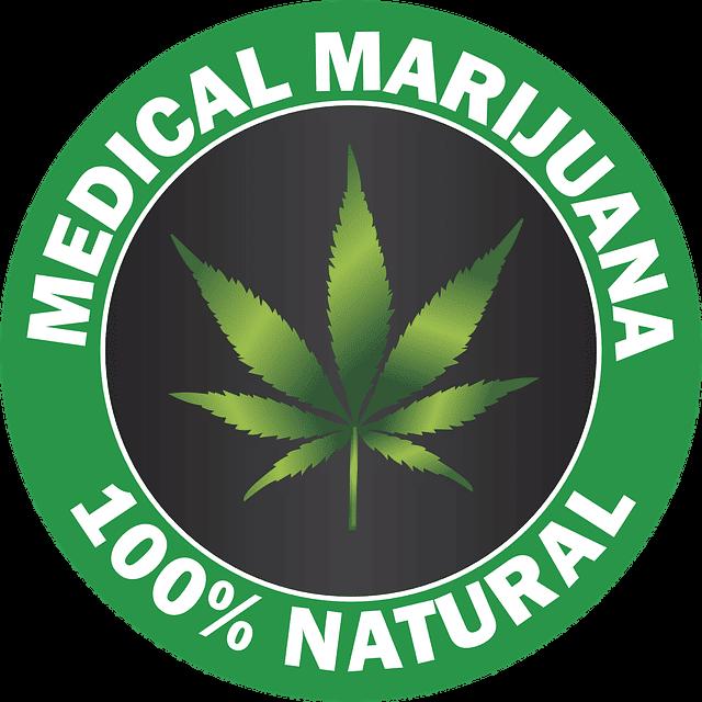 cannabis light riconosciuta pianta officinale